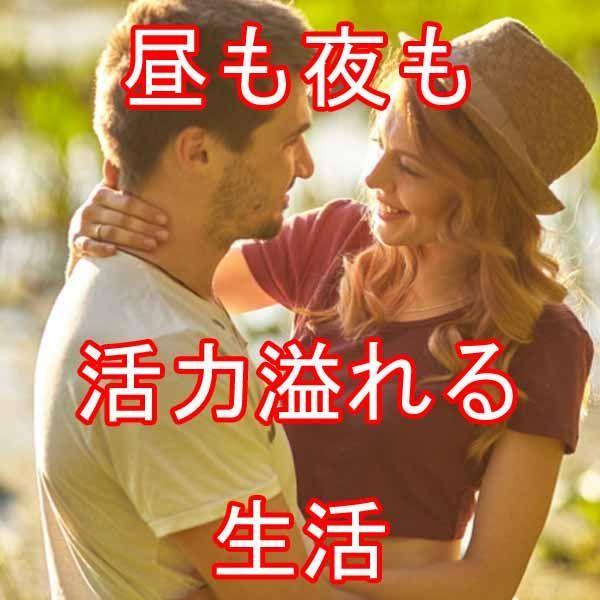 1円~  メンズ 活力 サプリ シトルリン + 有機マカ(ペルー産) M w_画像6