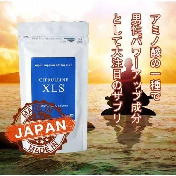 1円~  メンズ 活力 サプリ シトルリン + 有機マカ(ペルー産) M w_画像4