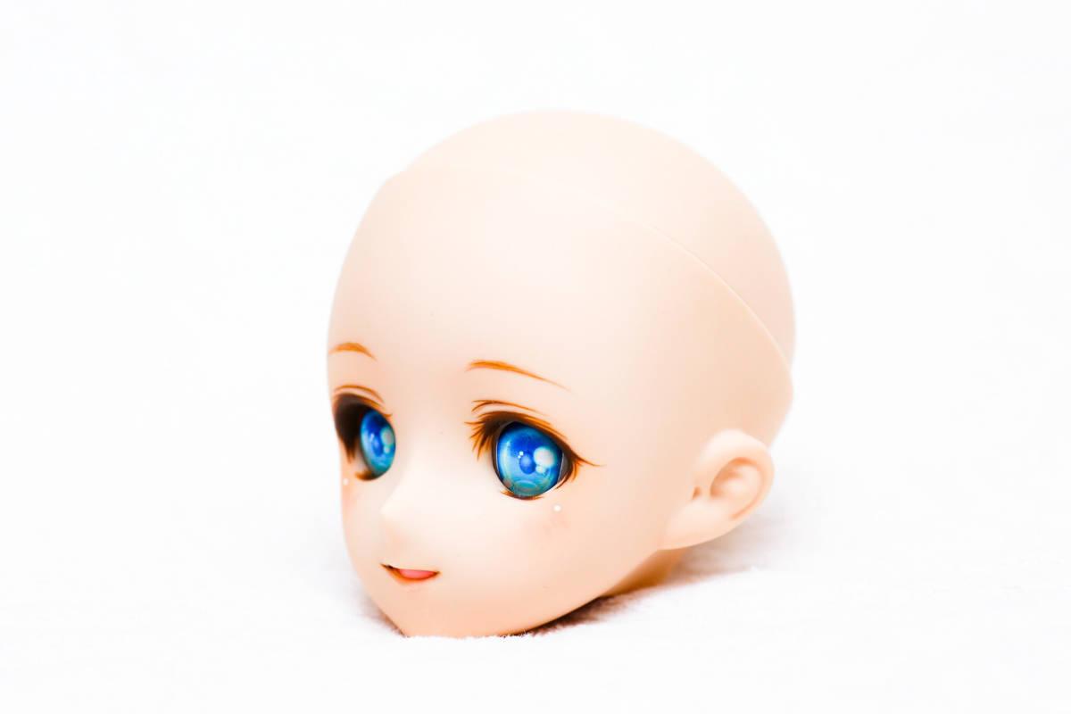 ★☆DDH08 カスタムヘッド ドルフィードリーム☆★_画像6
