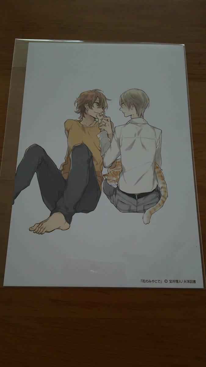 宝井理人◆花のみやこで◆イラストカード