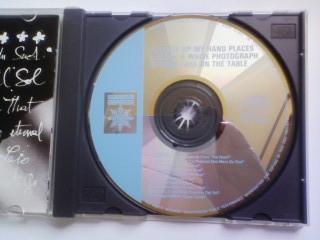 CD ウィンストン・トン アンテナ ポール・ヘイグ PAUL HAIG アンナ・ドミノ ニュー・オーダー NEW ORDER ウィム・メルテン WIM MERTENS_画像2
