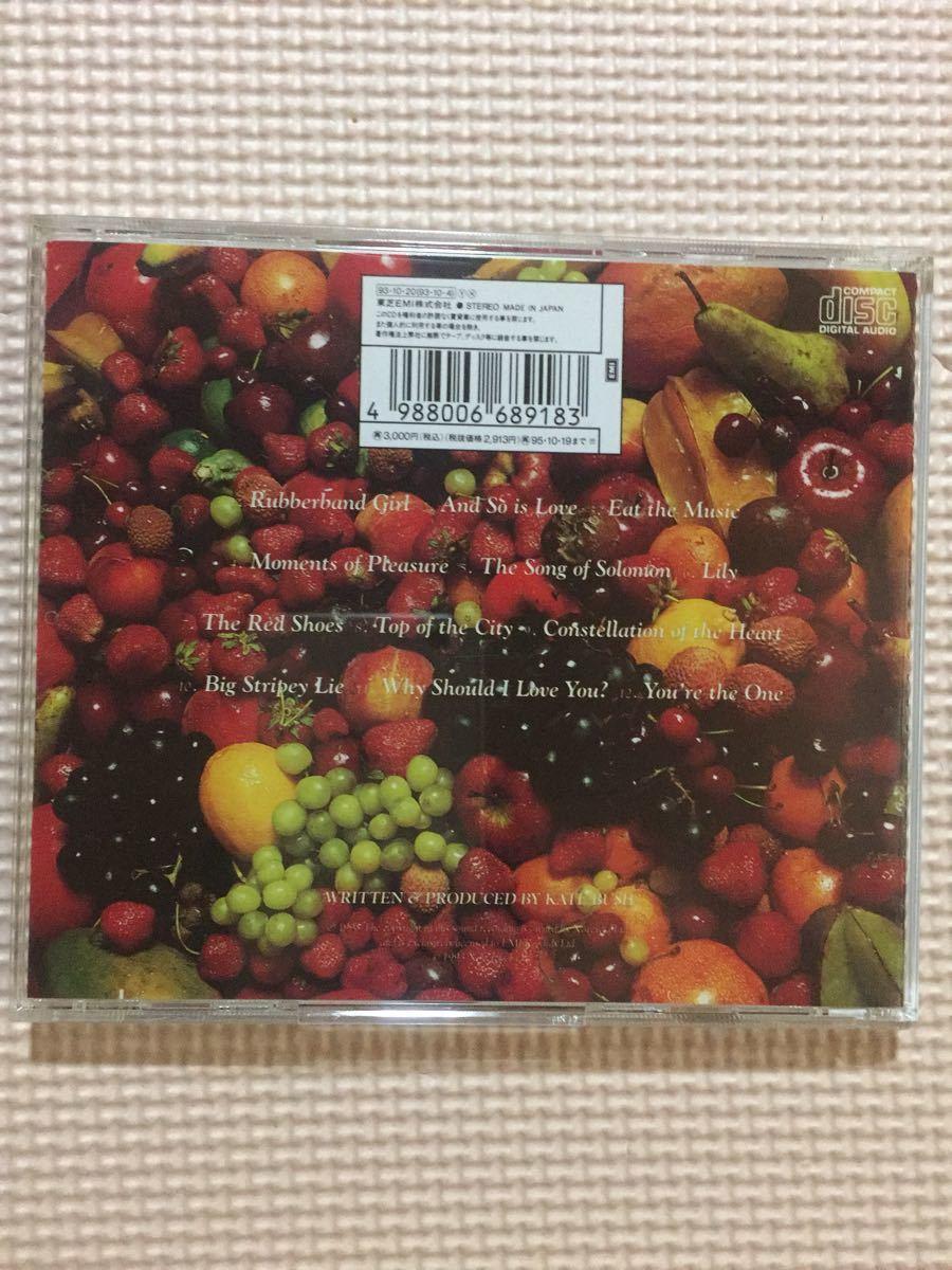 ケイト・ブッシュ レッド・シューズ 国内盤CD【ポスタージャケット】_画像2