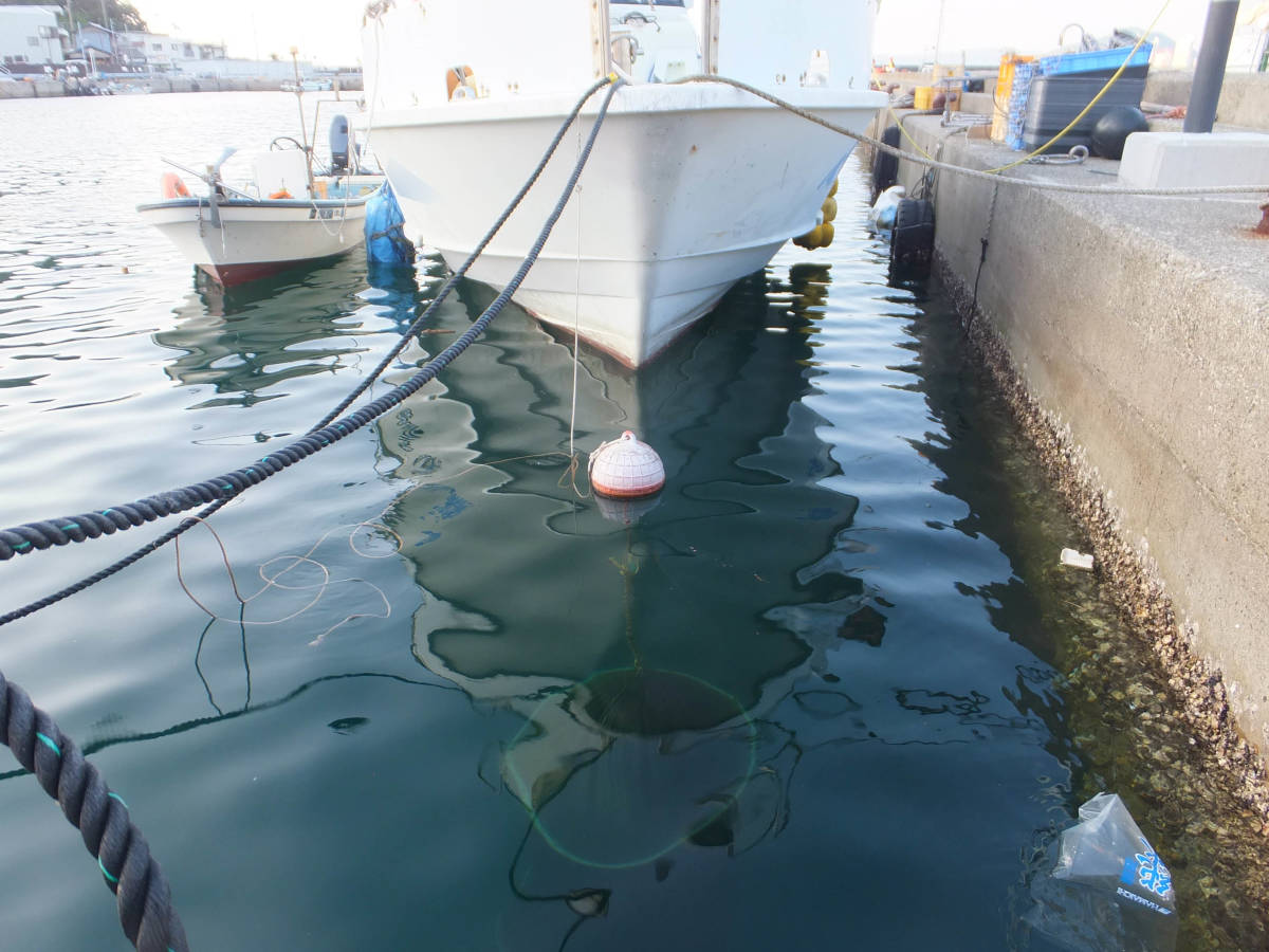 本格的な釣りに!  Jフィッシャー   51ft  近海区域の小型兼用船登録なので、多用途で使用可能!_画像8