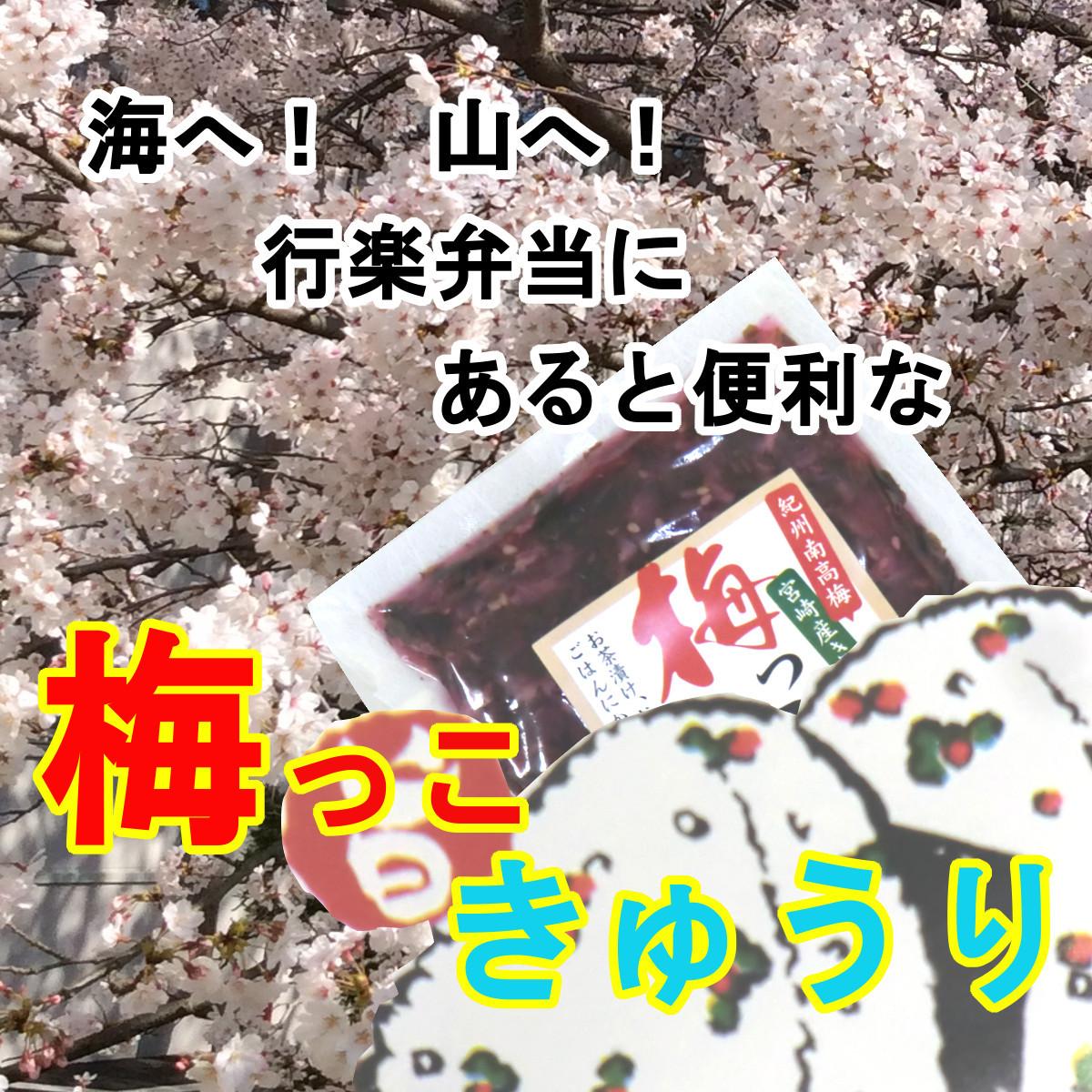 梅っこきゅうり 20袋 送料無料 宮崎のきゅうりと紀州南高梅のコラボ ご飯のお供 行楽弁当 ,おにぎり,混ぜご飯,お茶漬けの具に,おかずに_画像3