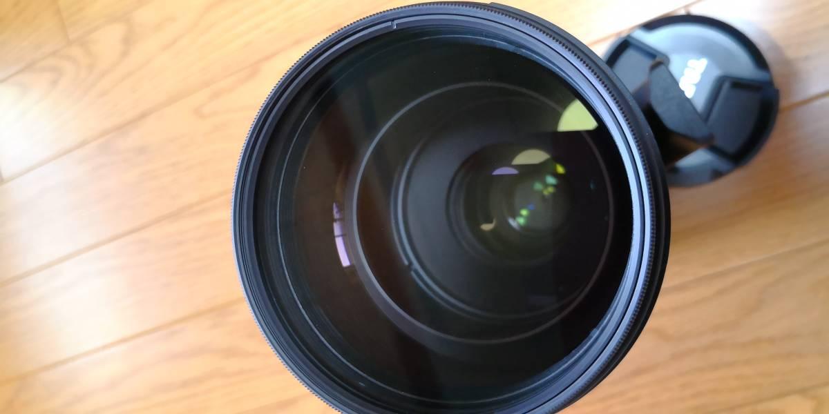 TAMRON SP 150-600mm F/5-6.3 Di VC USD (Model A011) [ニコン用]_画像4