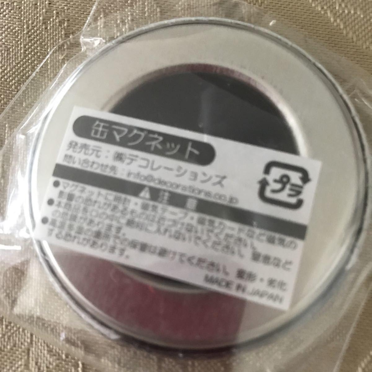 安室奈美恵 FinalSpaceマグネット1_画像2