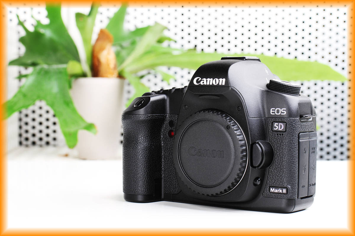 おまけ付き! Canon キヤノン EOS 5D Mark II マーク 2 ◇極美品◇フルサイズ◇デジタル一眼レフ◇カメラ◇Mark III◇Mark IV◇
