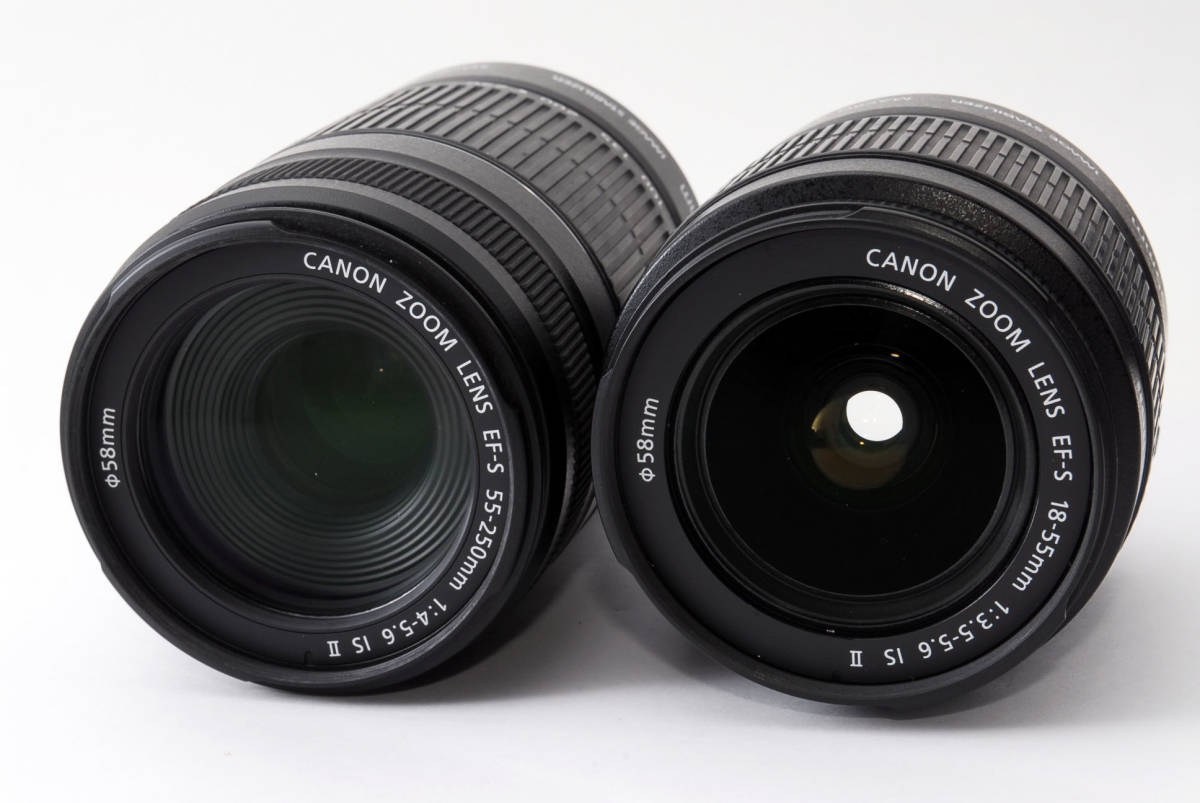 〓超美品〓Canon キヤノン EOS 80D ダブルレンズセット 付属品充実 標準・望遠レンズ キャノン大人気機種 SD8GBおまけ多数 【返金保証】233_画像3