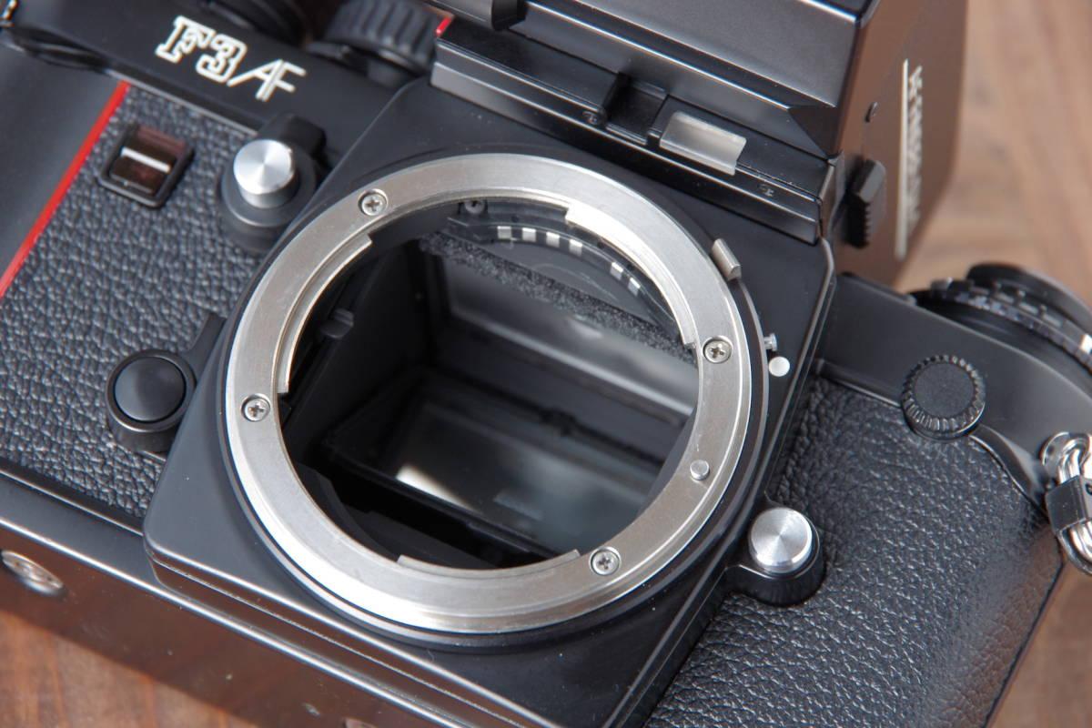 Nikon F3AF & AF-NIKKOR 80mm F2.8_画像6