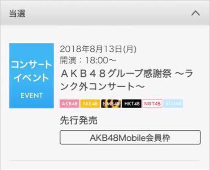 【同伴枠】AKB48グループ感謝祭 ランク外コンサート チケット 1枚 同伴入場 NMB SKE HKT NGT STU 市川市文化会館 8/13