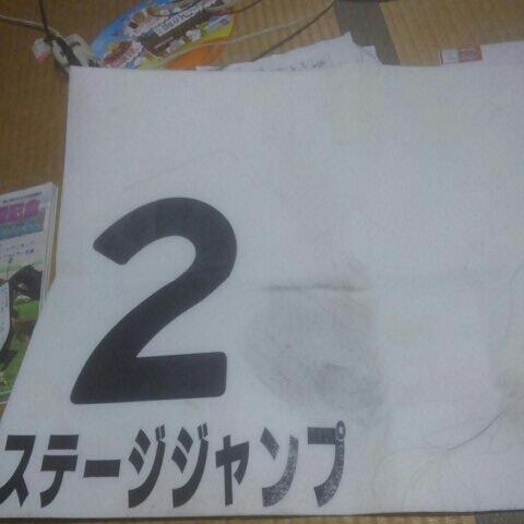 実使用ゼッケン 2016年10月15日4回東京4レース ステージジャンプ (田辺裕信) 5着_画像1