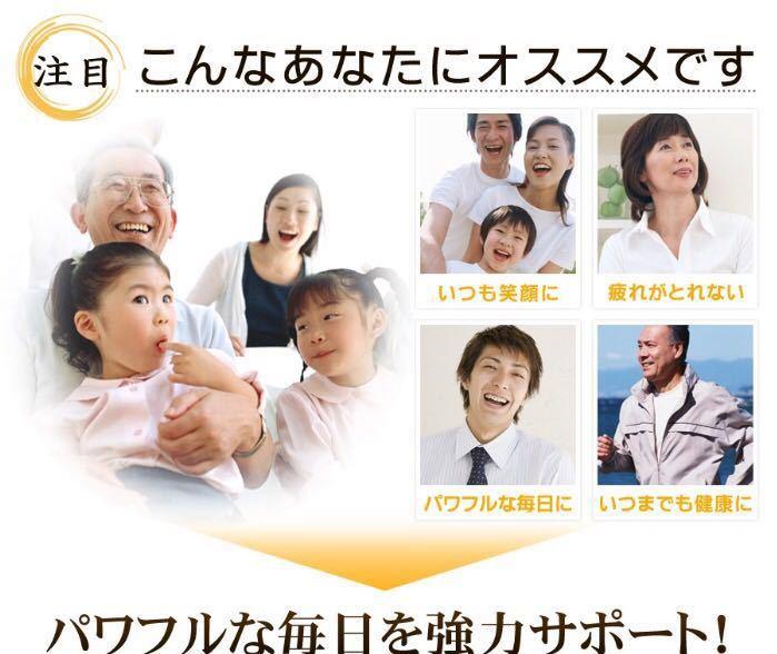 黒生姜入り にんにく卵黄+山人参カプセル 約1ヵ月分 健康 元気 国産_画像2