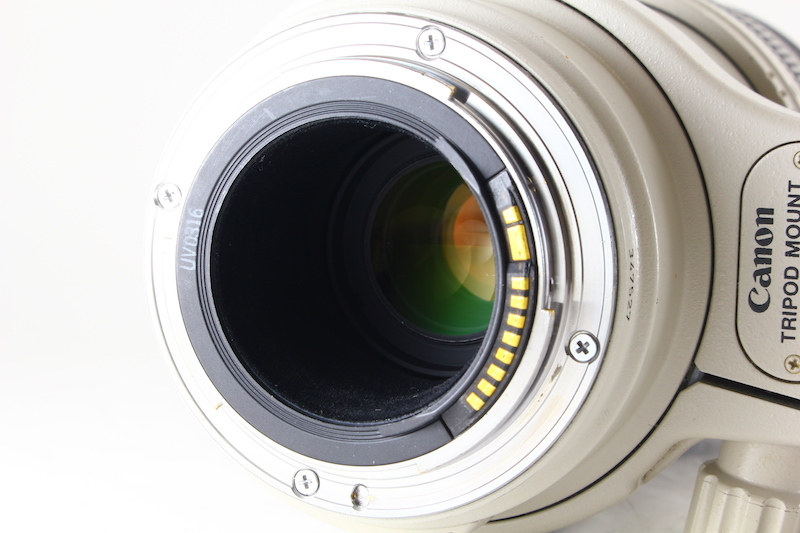貴重★美品級★Canon EF 100-400mm F4.5-5.6 L IS USM★絶好調★光学綺麗★フード★538 編號:u213847530