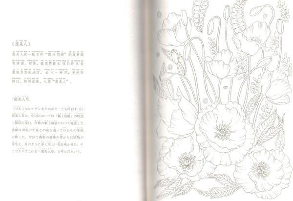 9784909140012 百花繚乱 中国伝統文化図譜 ピンイン付 日本語中国語対訳_画像5