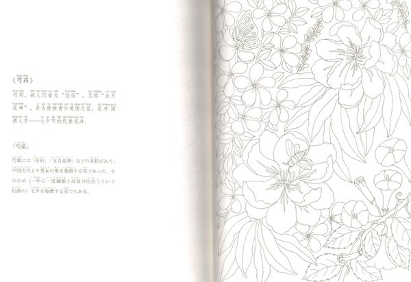 9784909140012 百花繚乱 中国伝統文化図譜 ピンイン付 日本語中国語対訳_画像6