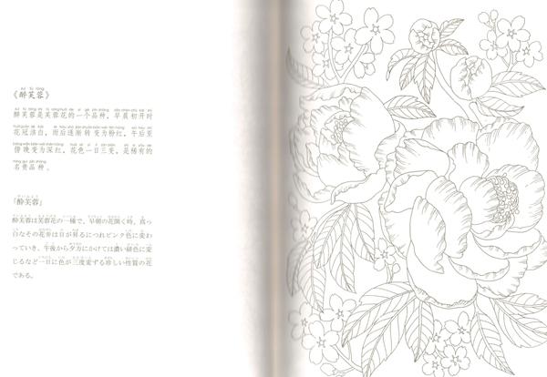 9784909140012 百花繚乱 中国伝統文化図譜 ピンイン付 日本語中国語対訳_画像3