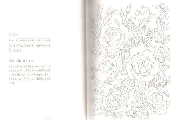 9784909140012 百花繚乱 中国伝統文化図譜 ピンイン付 日本語中国語対訳_画像4