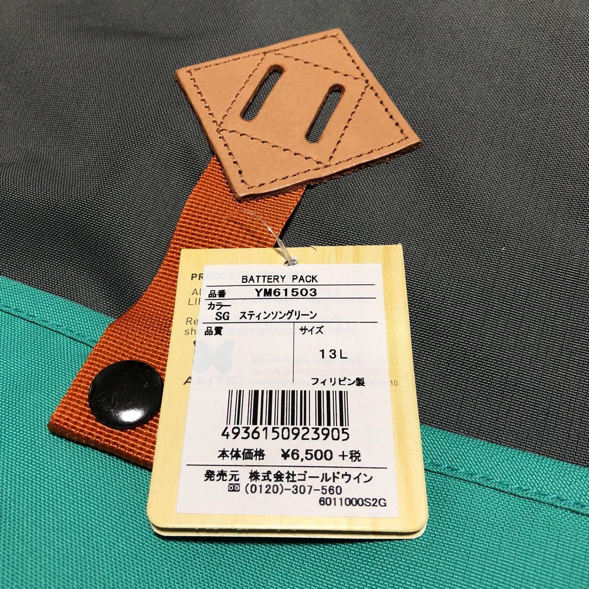 ALITE エーライト 新品 定価7020円 リュック ザック バッグ ノースフェイス店購入 登山 フェス アウトドア キャンプ_画像4