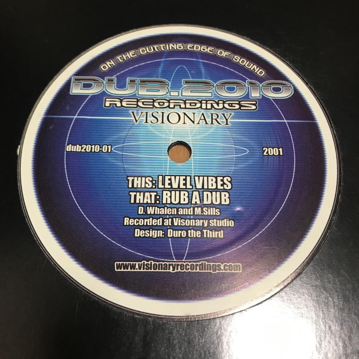 【Drum & Bass】Visionary / Level Vibes - Dub_2010 ドラムンベース_画像1