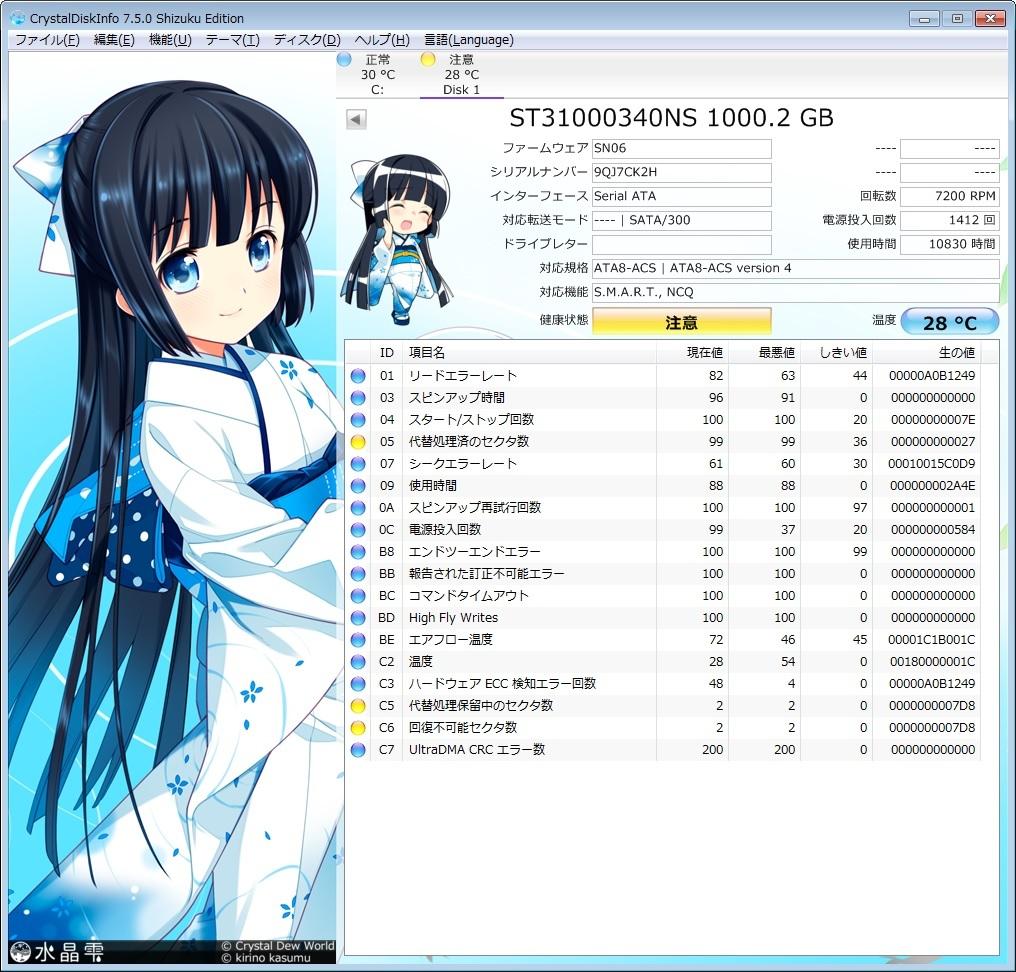【ジャンク扱い】[HDD] Seagate Barracuda ES.2 1000GB ST31000340NS 9CA158-304 1TB 1.0TB_画像1