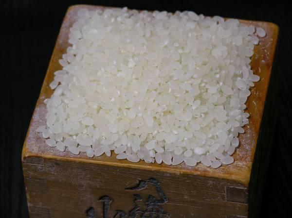 30年産 刈り取り終了 !本物の南魚沼産を小さな農家がお届け こしひかり コシヒカリ おいしい 無洗米 おてがる版 5k