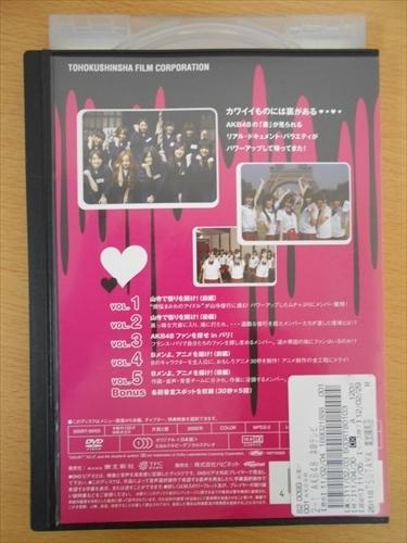 DVD レンタル版 AKB48 ネ申テレビ シーズン2 1st_画像2