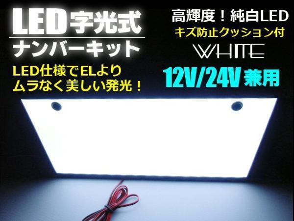 EL以上 12V/24V兼用 薄型 LED 字光 ナンバープレート 全面発光 G_画像1