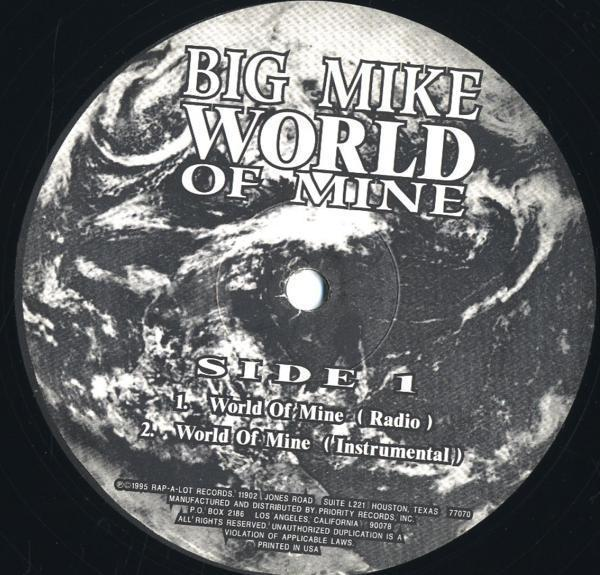 12inch☆BIG MIKE / WORLD OF MINE / PVL 53857_画像3