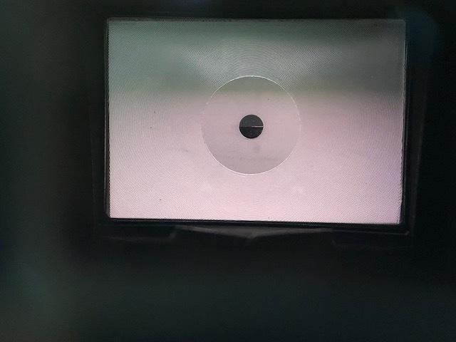 ファインダーから覗いた画像
