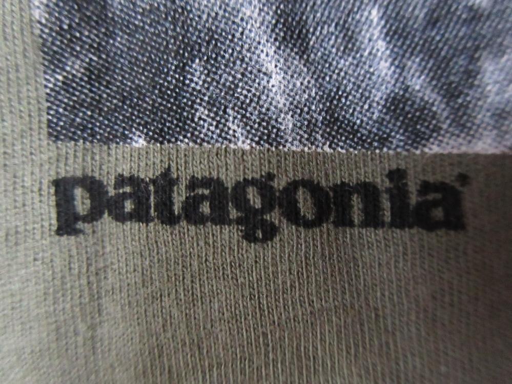 日本未発売 USA製 パタゴニア NEW DAWN LW Tシャツ M PATAGONIA フォト ロープ カットソー 写真 クライミング アウトドア ハイキング 登山_画像8