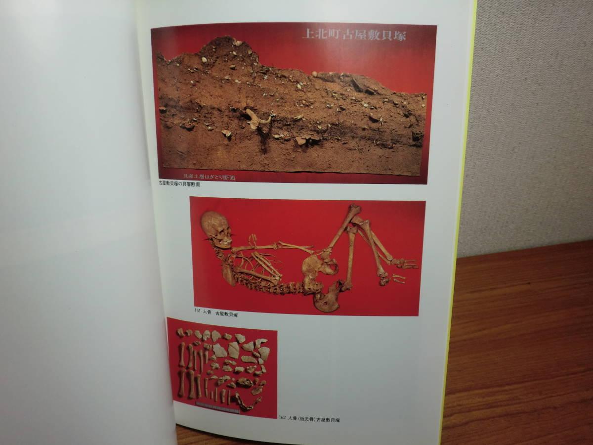 180929L05★ky 希少資料 図録 青森県の貝塚 昭和63年 八戸市博物館 縄文時代 食生活 骨角器 人骨 獣骨 もり頭 ヘアピン 玉 釣針 装飾品 _画像5