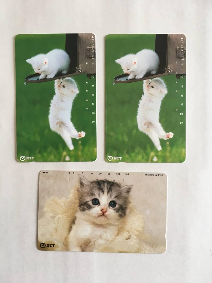 ★仔猫 ネコ 猫 動物 使用済み テレホンカード テレカ 3枚 NTT_画像1