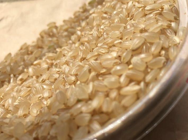 令和2年産 宮城県南ひとめぼれ5kg になります。_玄米