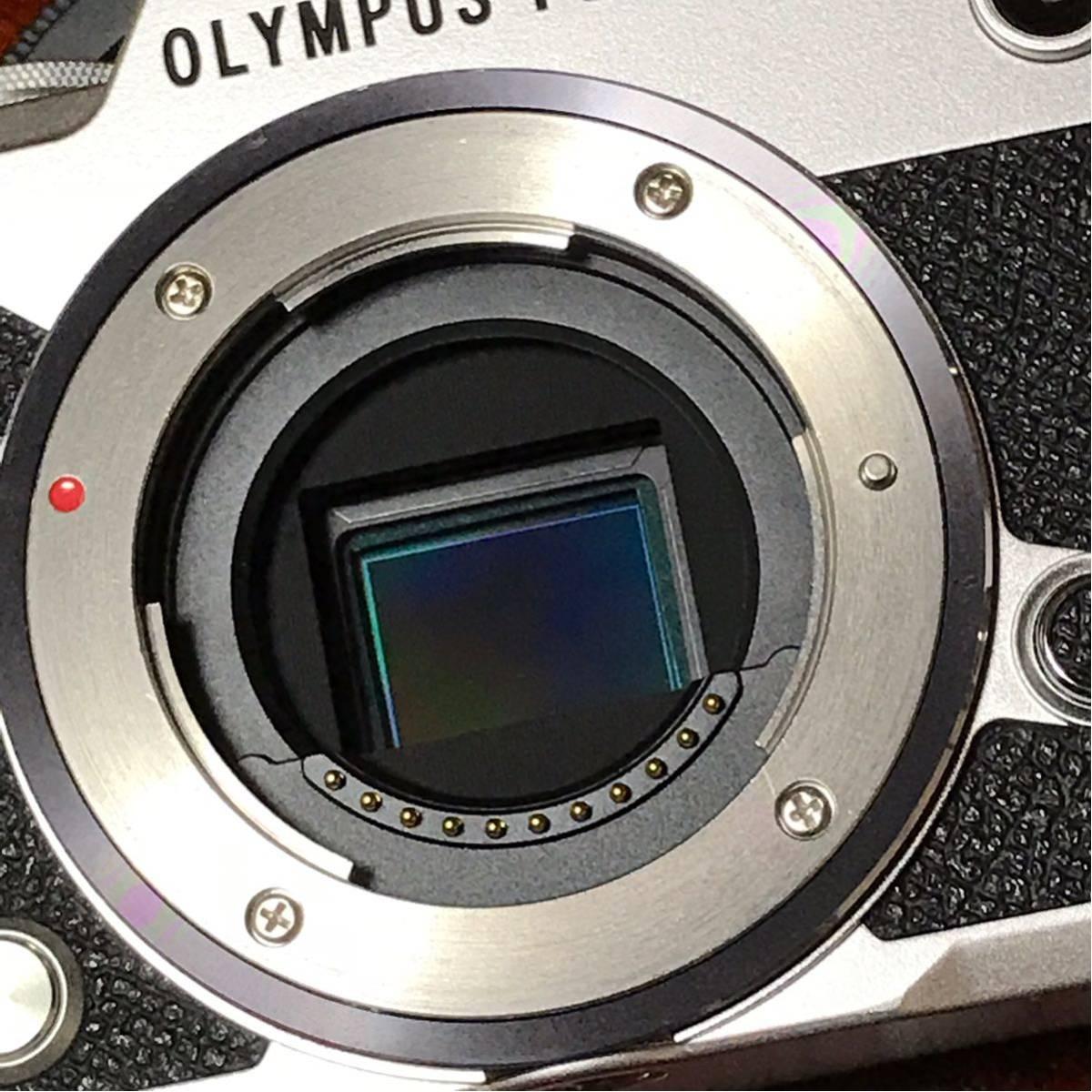 OLYMPUS PEN F_画像6