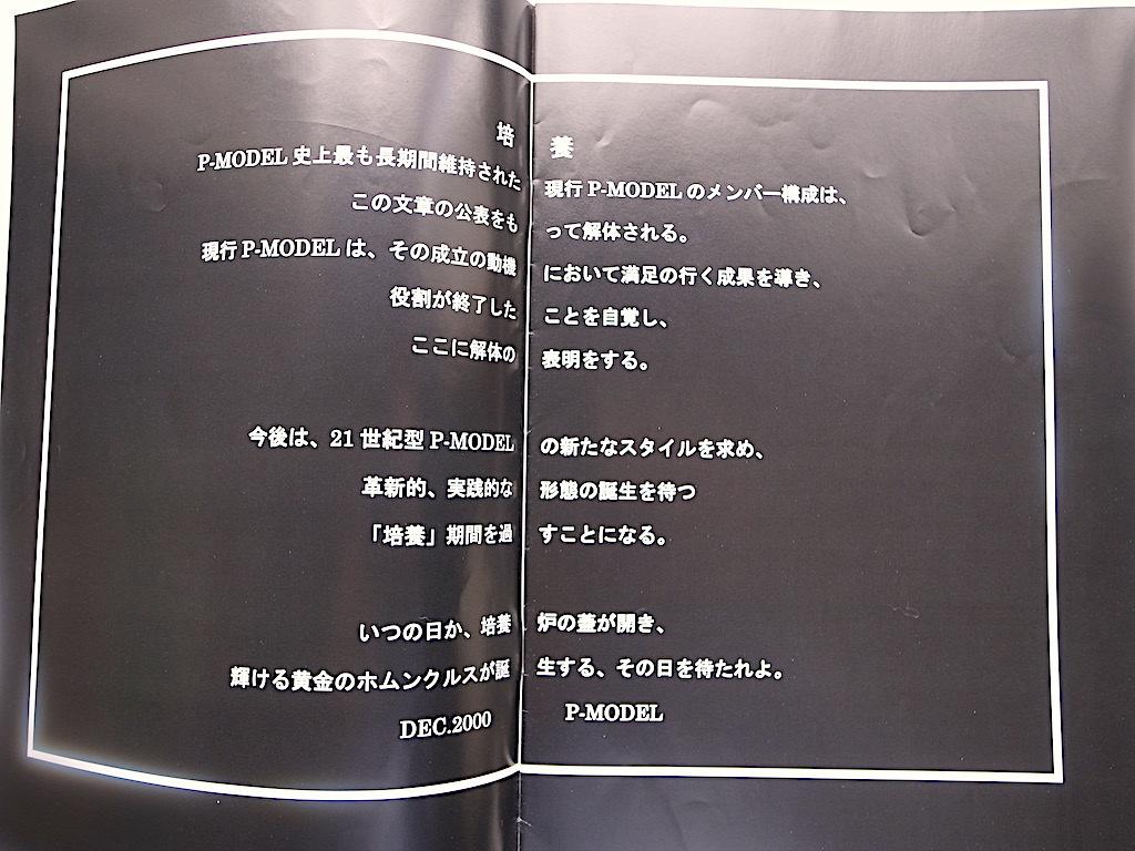 平沢進 ファンクラブ 会報 Vol.7 GREEN NERVE 2000年中古品_画像3