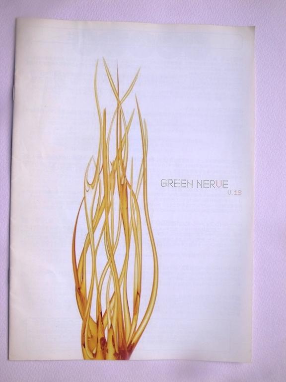 平沢進 ファンクラブ 会報 Vol.19 GREEN NERVE 2006年中古品