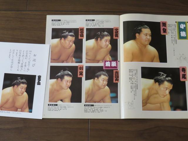 ★大相撲 5月場所 プログラム/1994年★523_画像5