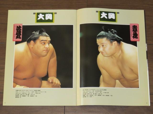 ★大相撲 5月場所 プログラム/1994年★523_画像3