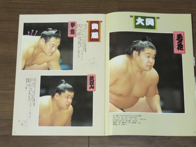 ★大相撲 5月場所 プログラム/1994年★523_画像4
