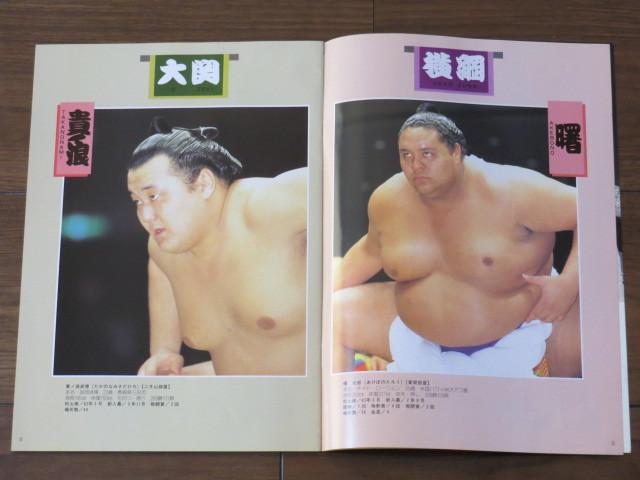 ★大相撲 5月場所 プログラム/1994年★523_画像2