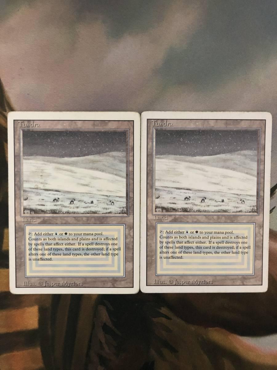 【MTG】Tundra×2【PLD】A