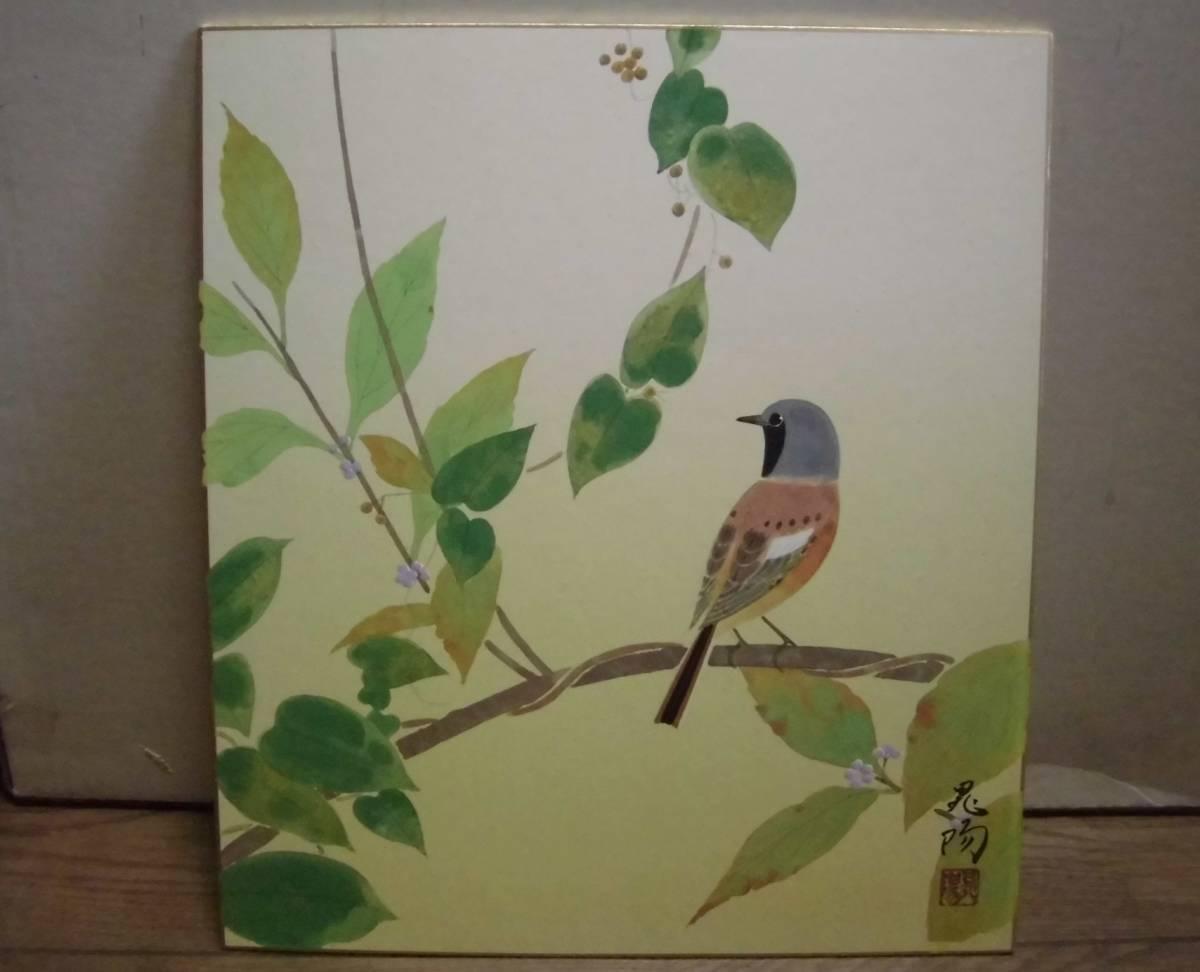 古い 肉筆 花鳥画 色紙 在銘 サイン ガラス木製額縁入り 掛軸風 日本画 壁掛け 飾り物_画像3