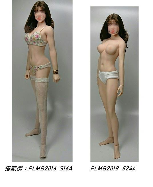 参考写真:Phicenボディのサイズ感比較