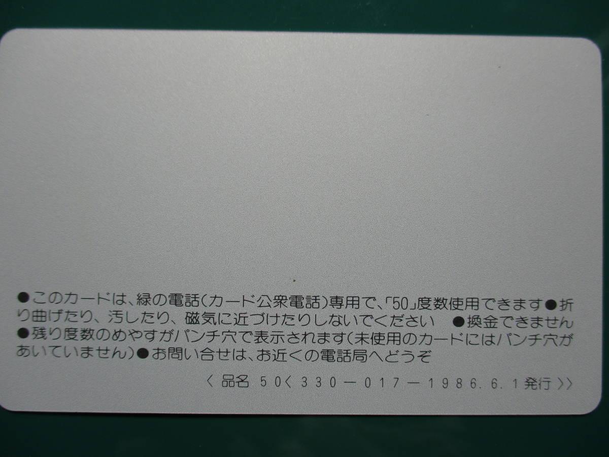 播磨国総社祭礼 テレホンカード_画像2