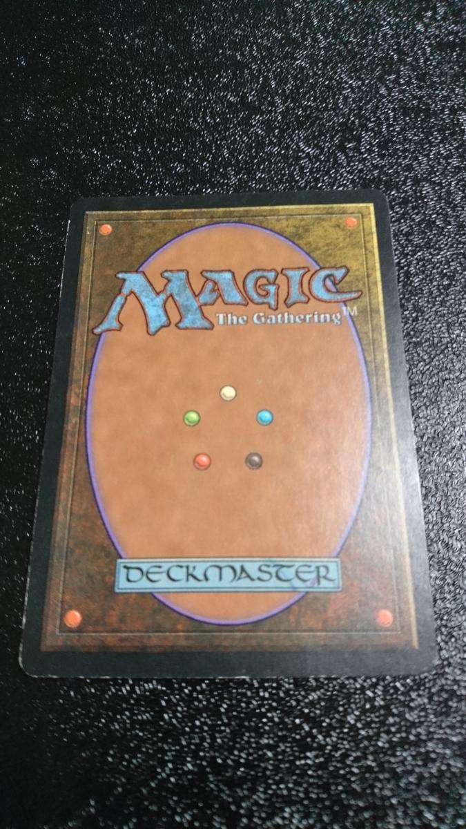 マジック:ザ・ギャザリング コーの槍騎兵 Magic:The Gathering マジック ギャザリング_画像2