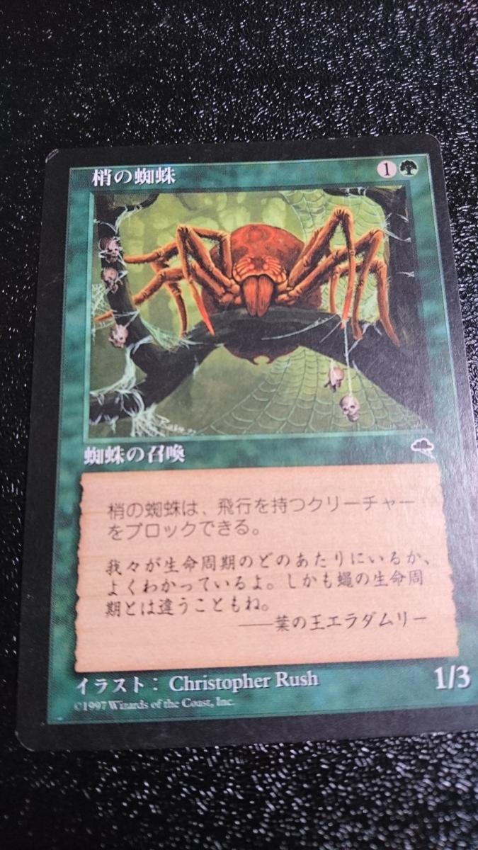 マジック:ザ・ギャザリング 梢の蜘蛛 Magic:The Gathering マジック ギャザリング_画像1