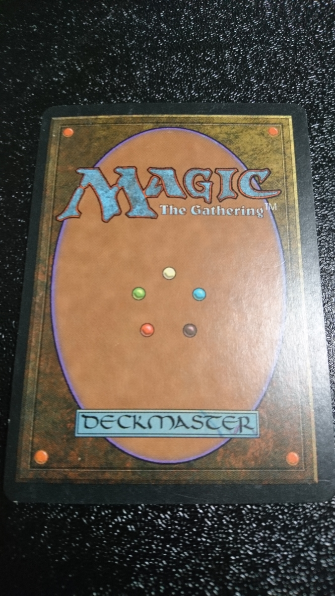 マジック:ザ・ギャザリング 梢の蜘蛛 Magic:The Gathering マジック ギャザリング_画像2