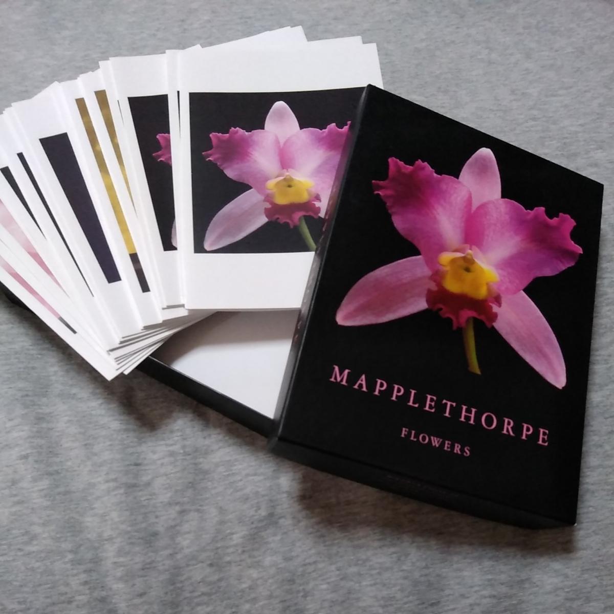 送料込■ロバート・メイプルソープ■FLOWERSグリーティングカードセット未使用(カードと封筒20セット入口)■ROBERT MAPPLETHORPE■写真家