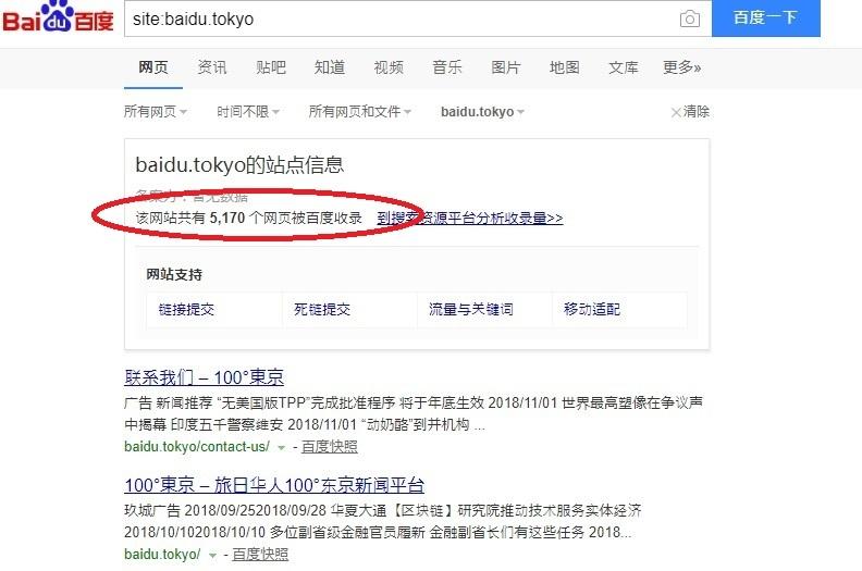 ドメイン: baidu.tokyo 希少 中国最大手検索サイトbaiduと同名前 中国系向け旅行サイトや、情報サイトに最適_画像2