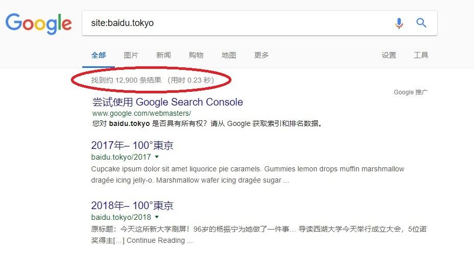 ドメイン: baidu.tokyo 希少 中国最大手検索サイトbaiduと同名前 中国系向け旅行サイトや、情報サイトに最適_画像3
